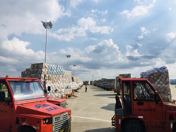 南昌机场在航空货运逆势增长中彰显责任担当