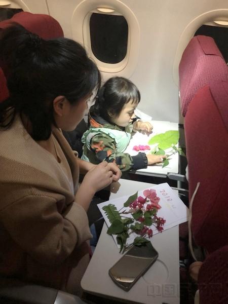 邀请旅客一起制作树叶标本.