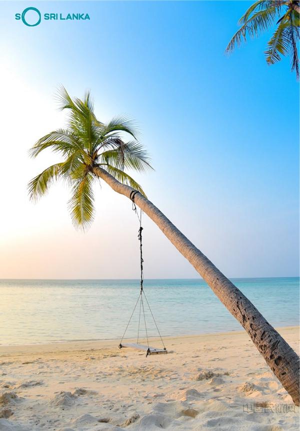 斯里蘭卡8月1日起重新對國際游客開放